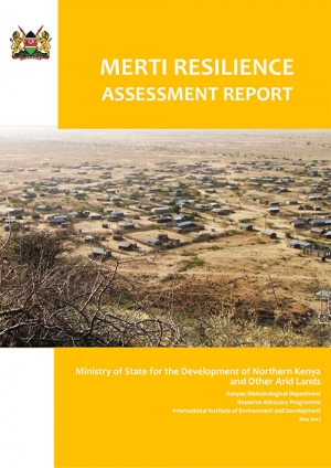 Merti Resilience Assessment Report
