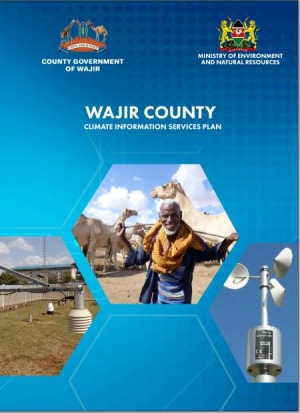 Wajir CIS plan